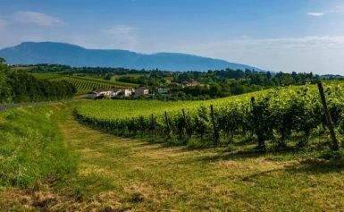 Federico Motta Editore: l'Italia e il primato di siti Unesco