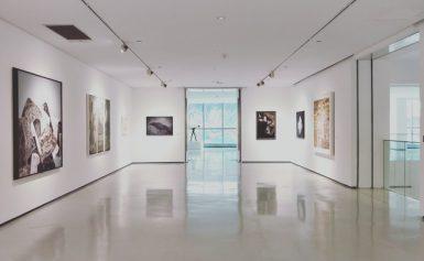 Pinacoteca di Brera: spazio alle emozioni